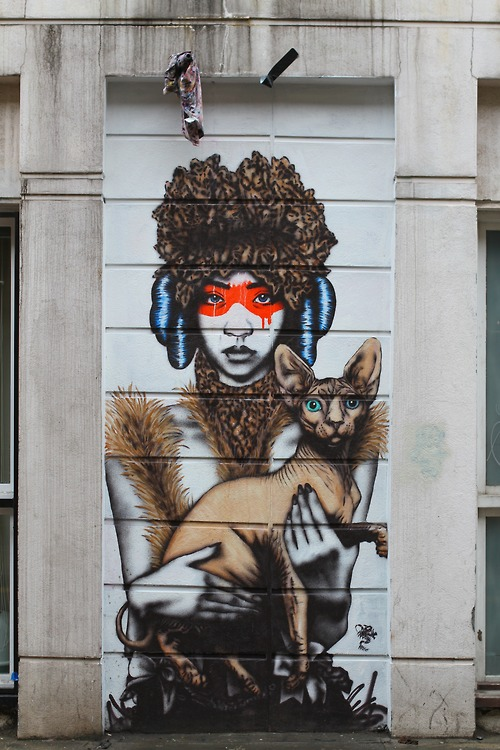 CanineFeline by Fin DAC, London