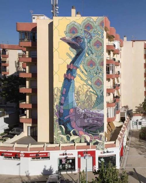 ARYZ-Spain